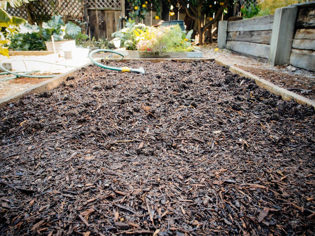 Freshly prepared garden bed
