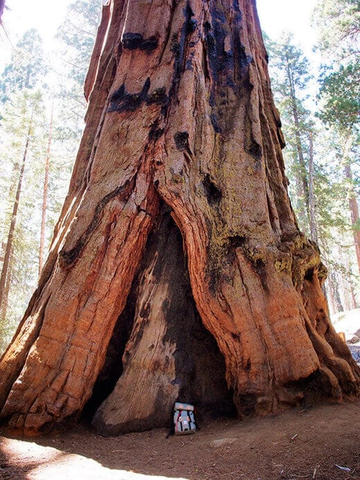 The Klettersack in Sequoia National Park
