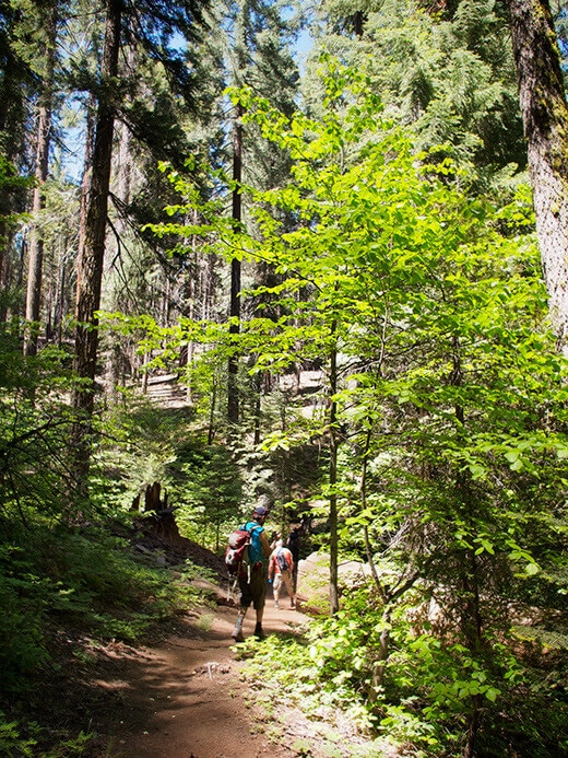 Hiking to Crescent Meadow