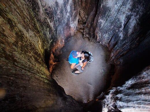 Smoochin' inside a sequoia