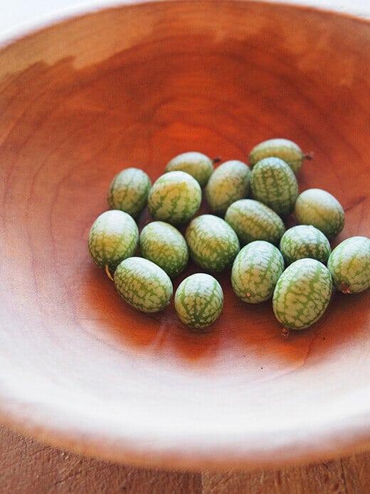 Mexican Sour Gherkin cucumbers