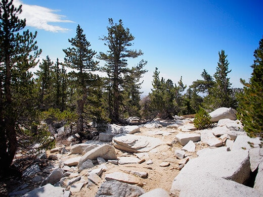 Final ascent to the summit of Mount San Jacinto