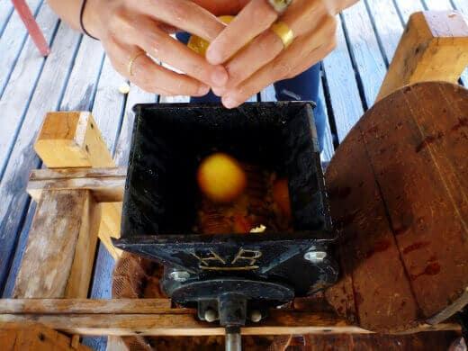 Old-fashioned cider press