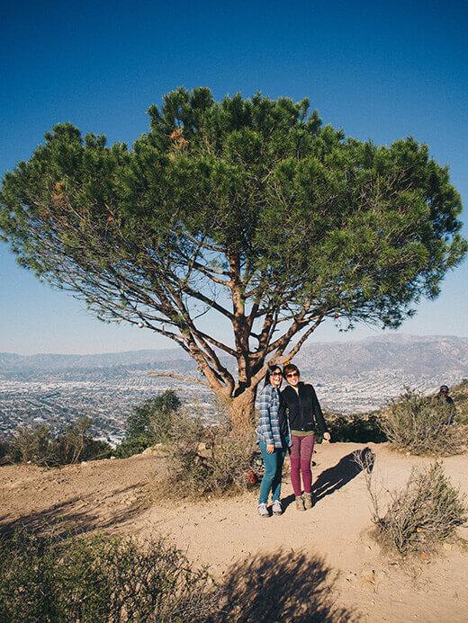 The Wisdom Tree on Burbank Peak