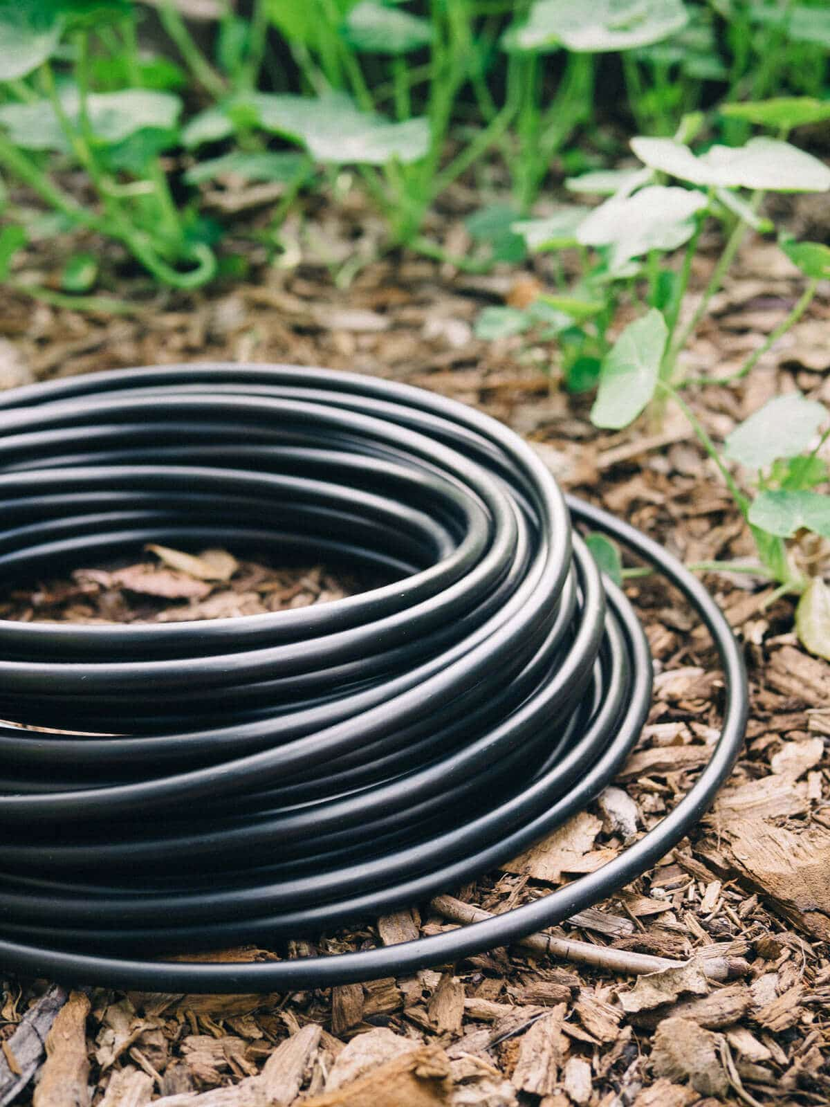 Drip Irrigation: Watering Your Garden While Saving Your Resources