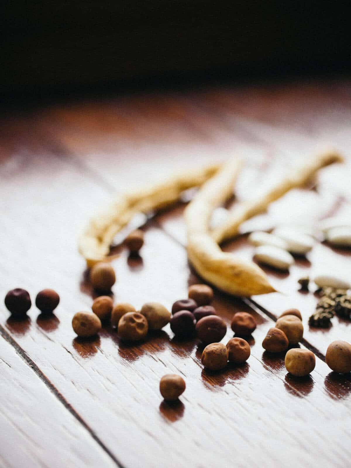 How long do seeds really last? (Plus, a cheat sheet on seed storage life)
