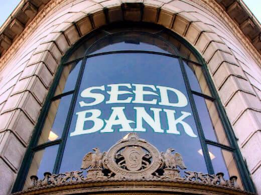 My first official book event at Petaluma Seed Bank