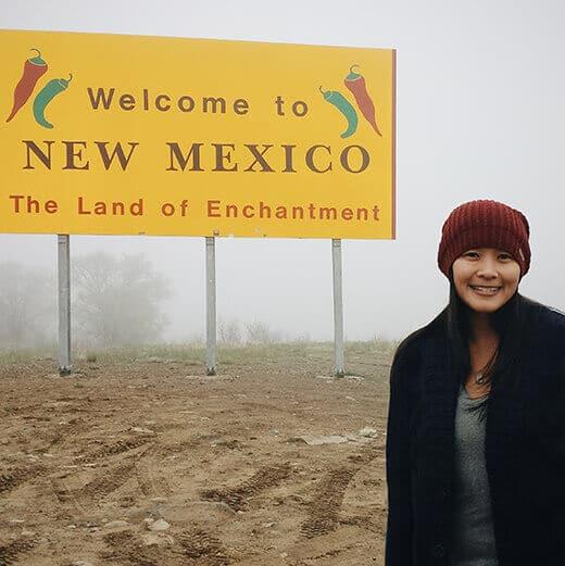 New Mexico stateline