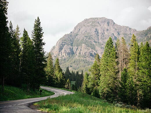 An awe-inspiring road in Yellowstone