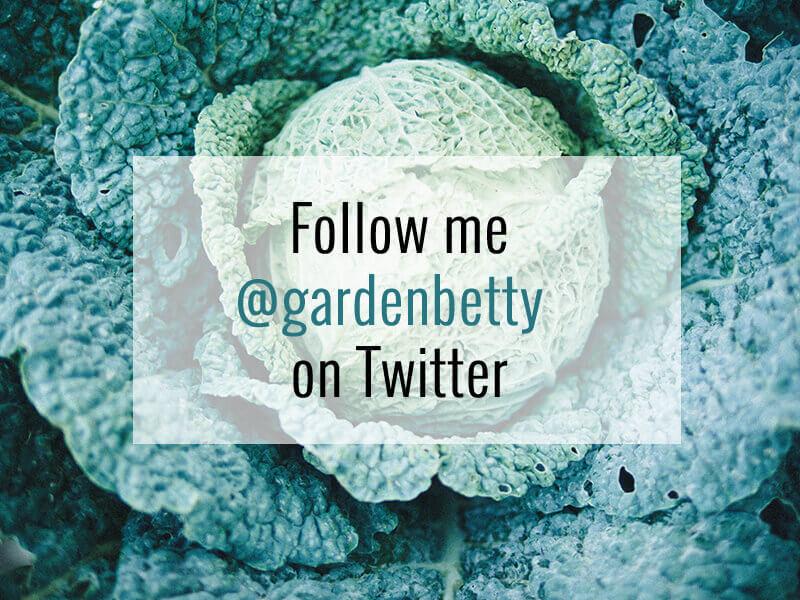 Follow my new Twitter handle