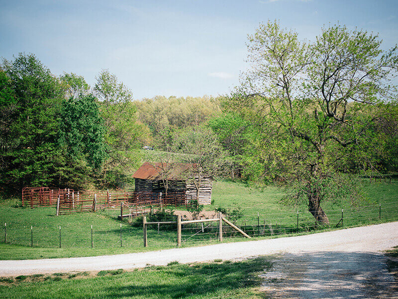 Baker Creek farm in the Ozark hills