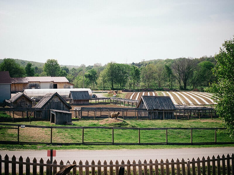 Farm and trial gardens at Baker Creek