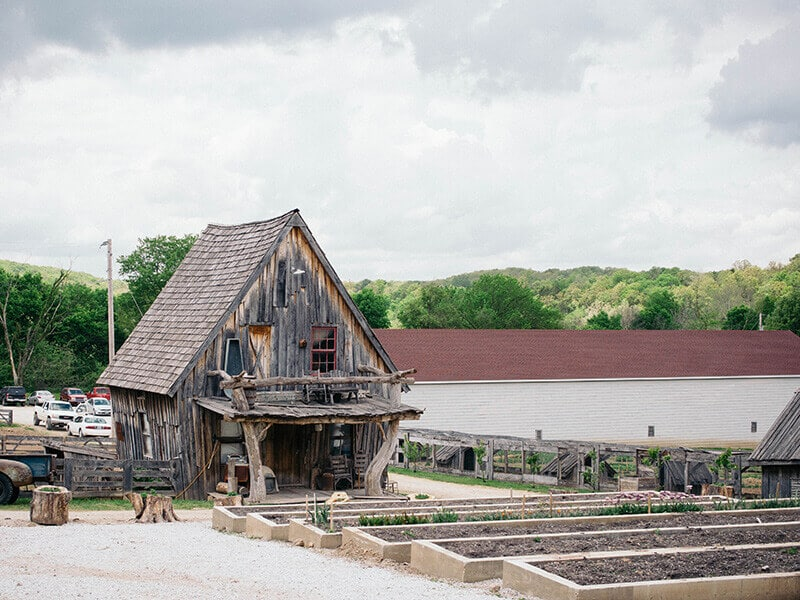 Old-time cabin and raised beds