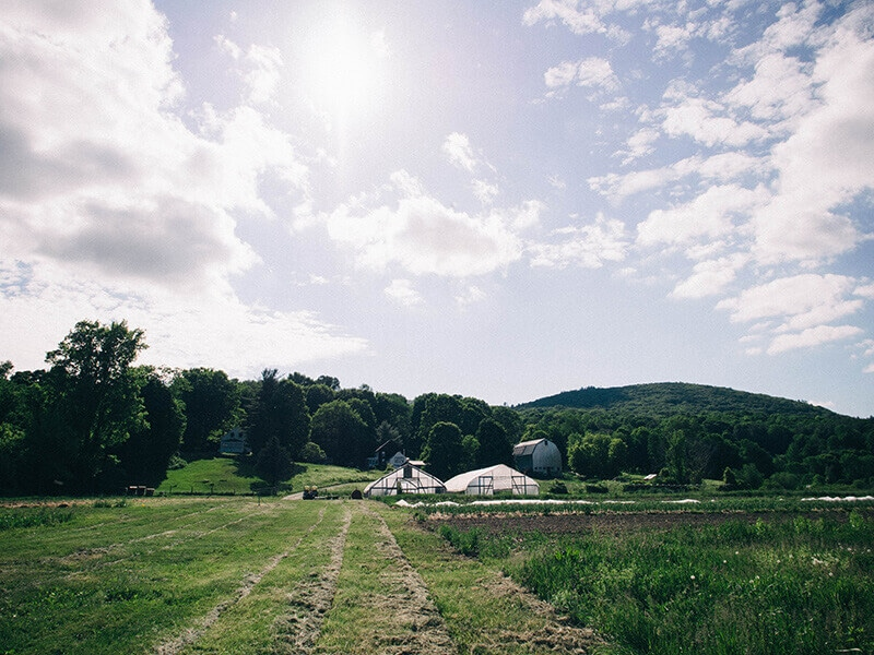 Indian Line Farm, home of the country's first CSA concept