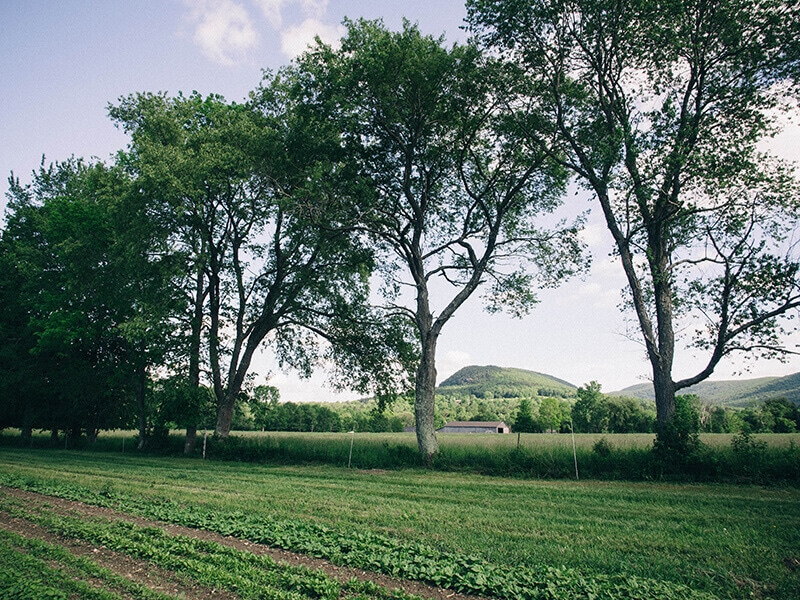 Indian Line Farm in the Berkshire Hills