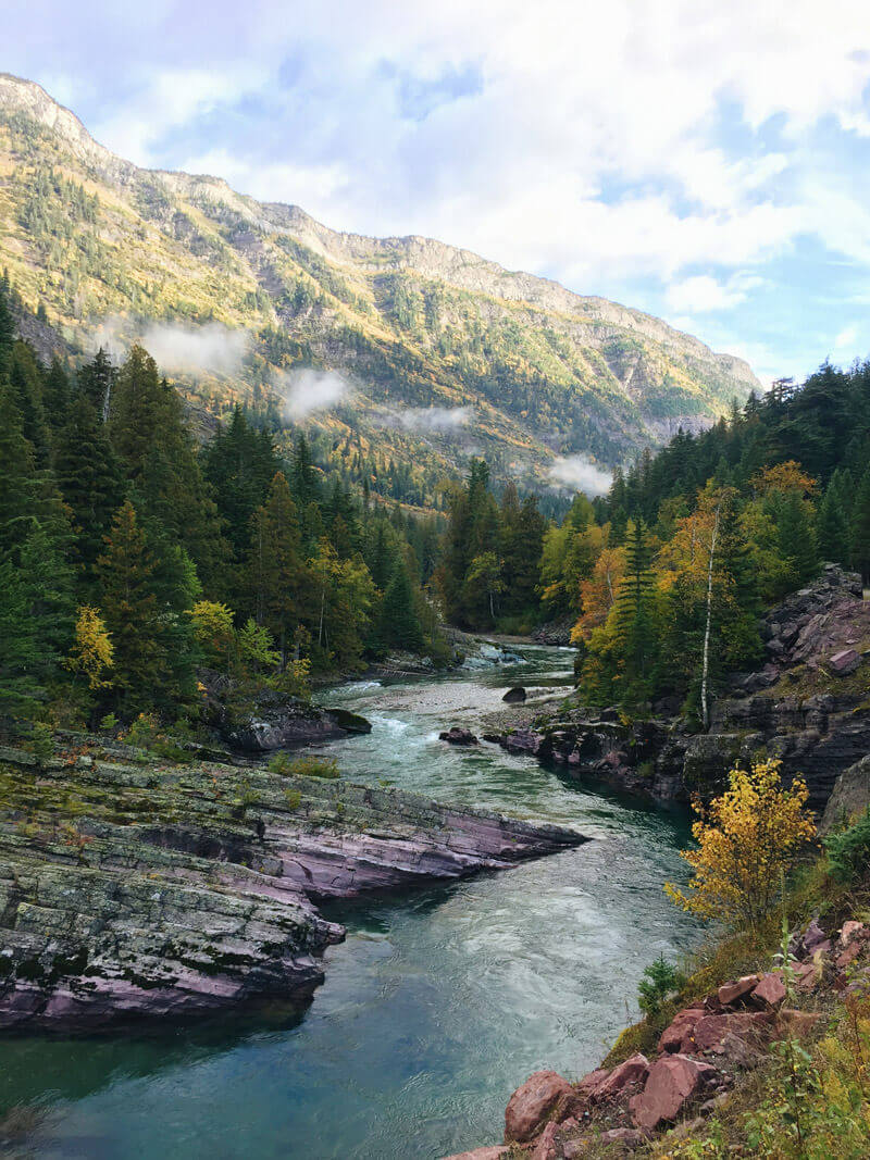 Fall color in West Glacier, Montana