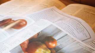 Decoding Your Garden Seed Catalogs