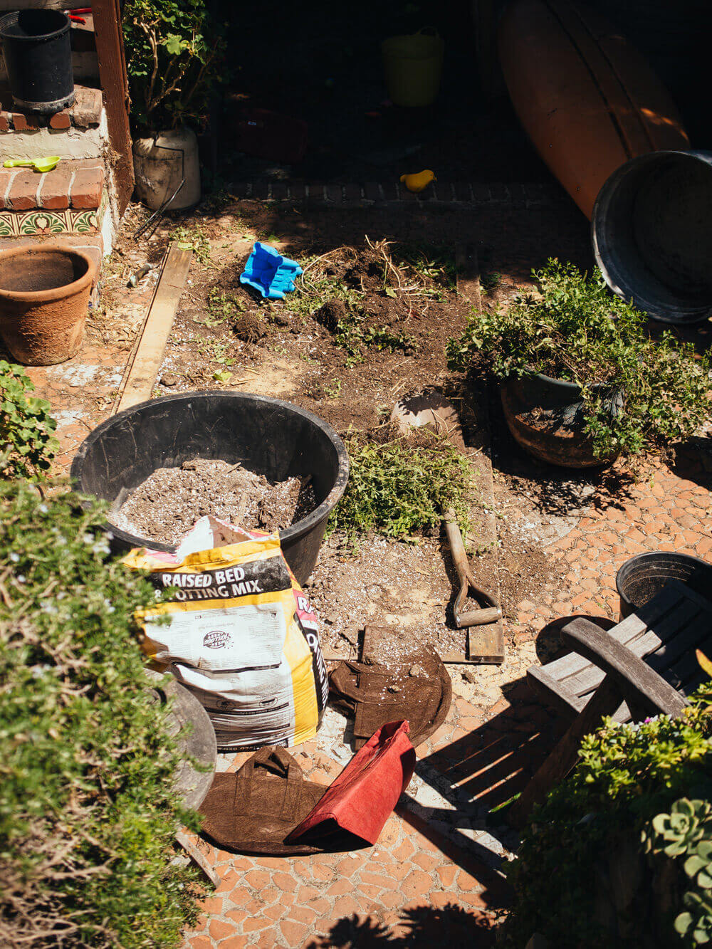 Last-minute clean-up in the garden