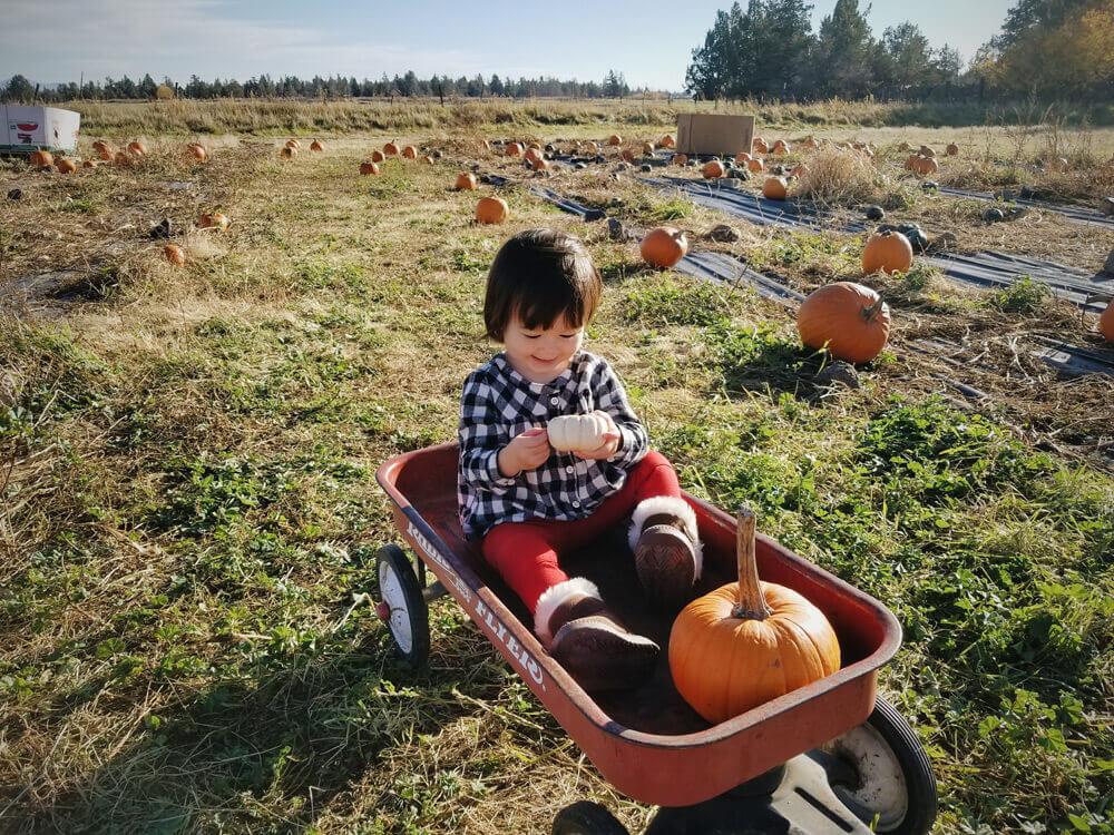 Gemma at the pumpkin patch