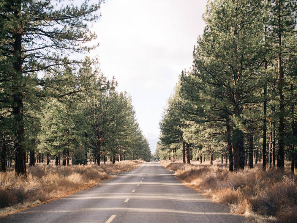Driving to higher elevation in Deschutes National Forest