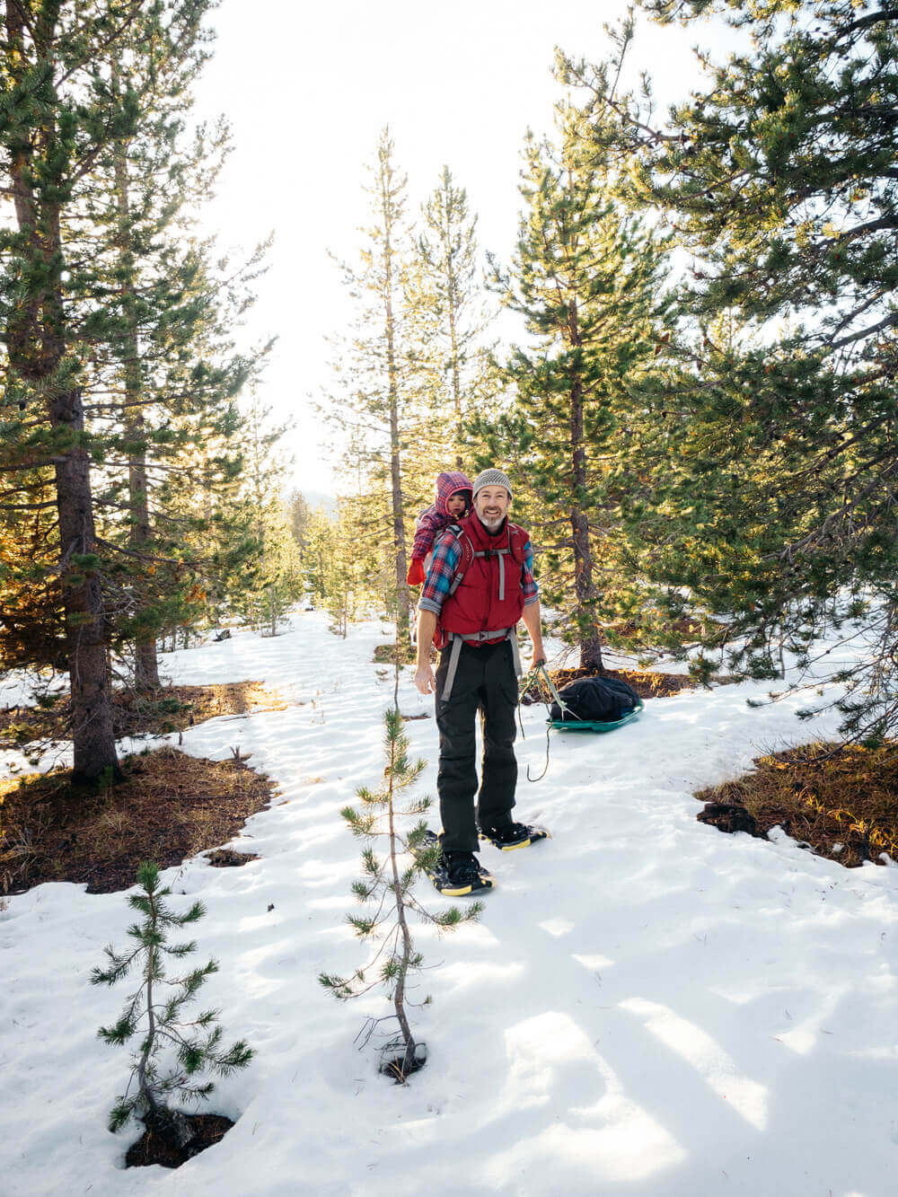 Snowshoeing in the national forest