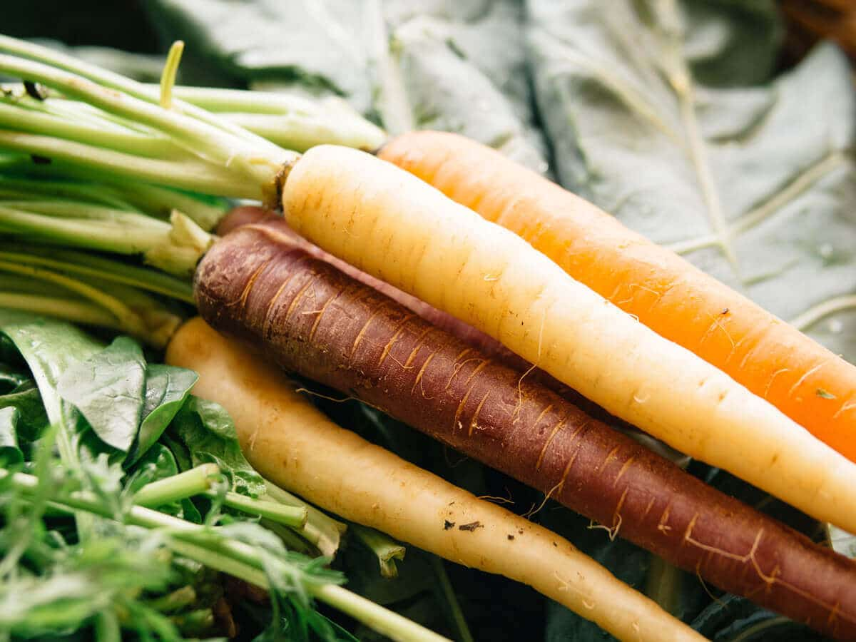 Surprise, carrots don't actually improve eyesight