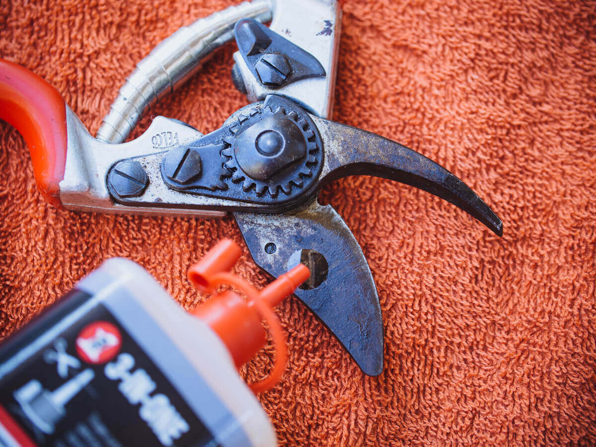 Add a few drops of lubricating oil to the pivot joints and blades of your pruners
