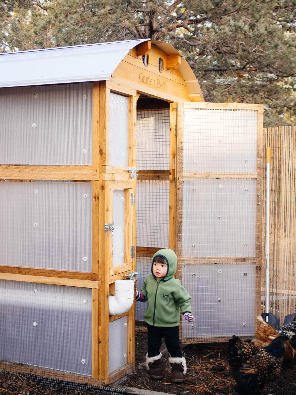 A chicken coop stormproofed with translucent twinwall plastic panels