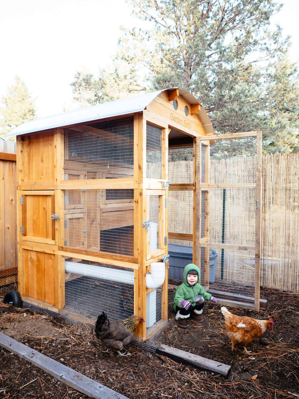 Tour my new chicken coop in Oregon