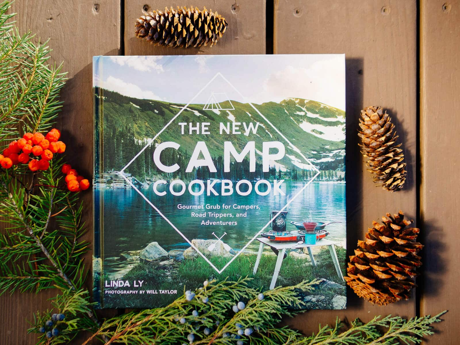 Soup and stew recipes in The New Camp Cookbook