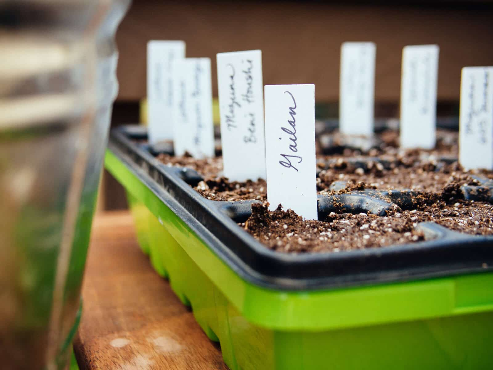 Label all your seedling pots