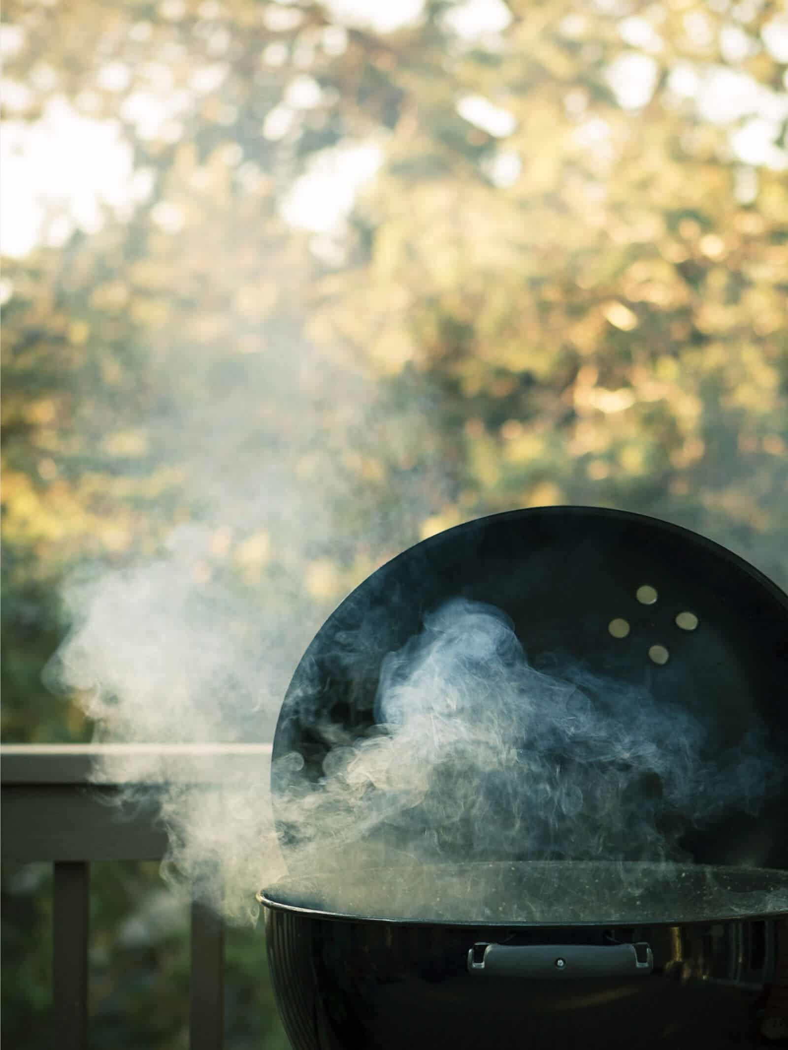Harness the fun, flavor, and power of wood smoke and fire for your outdoor meals