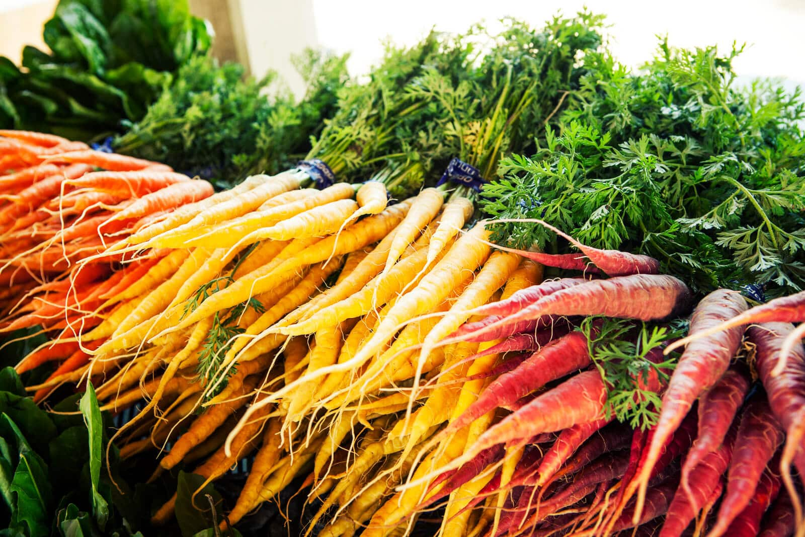 Buy carrot tops from the farmers market for the best quality and flavor