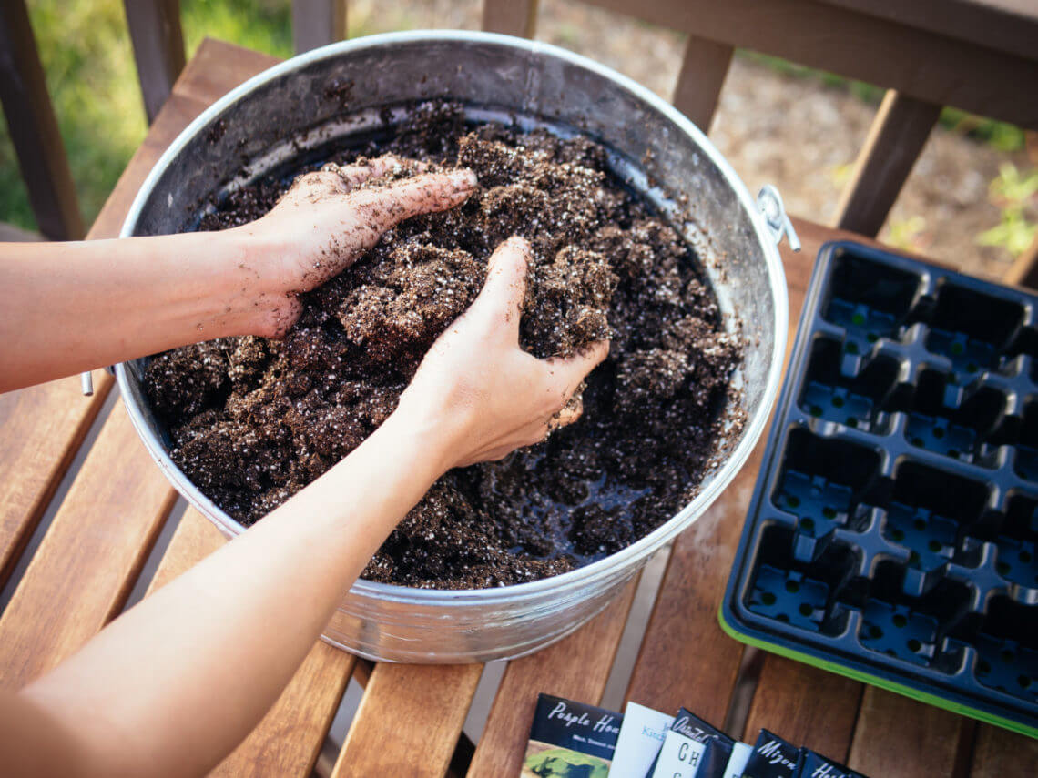 Make the best seed starting mix for dirt cheap (it's organic too)