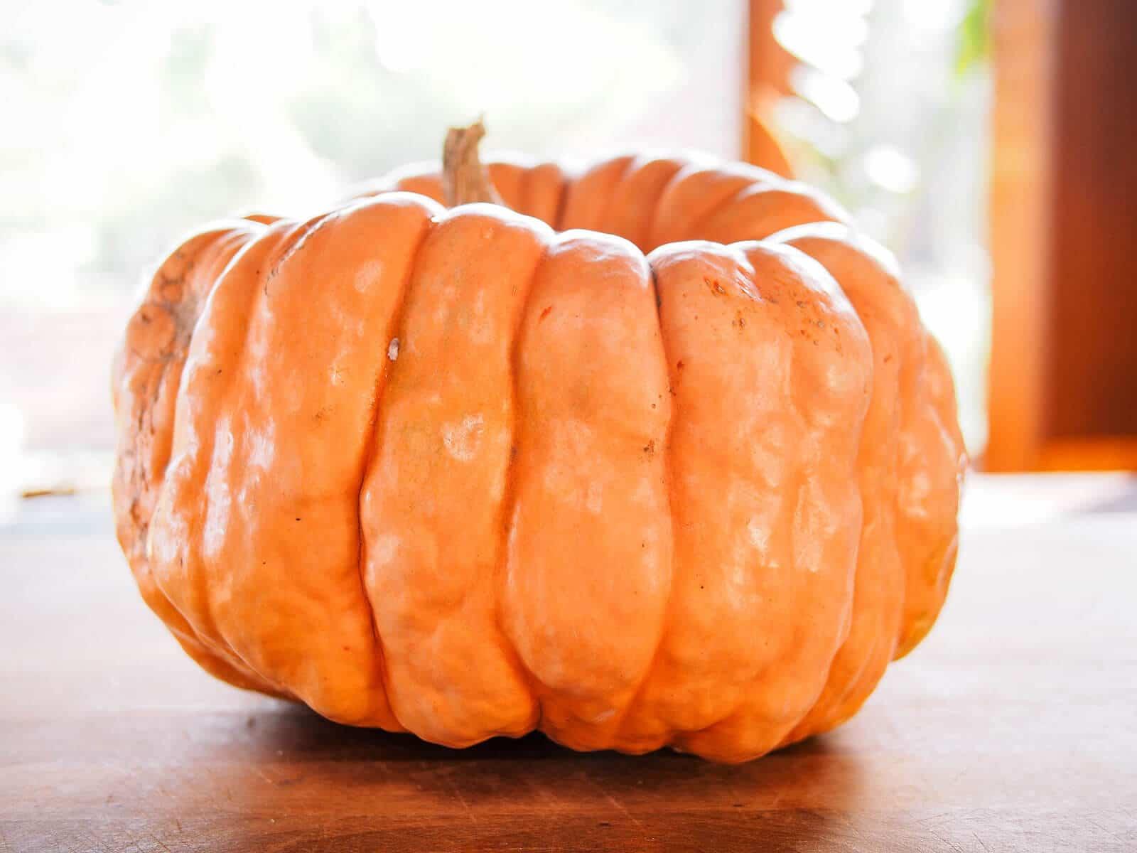 Ribbed pumpkin on a butcher block counter