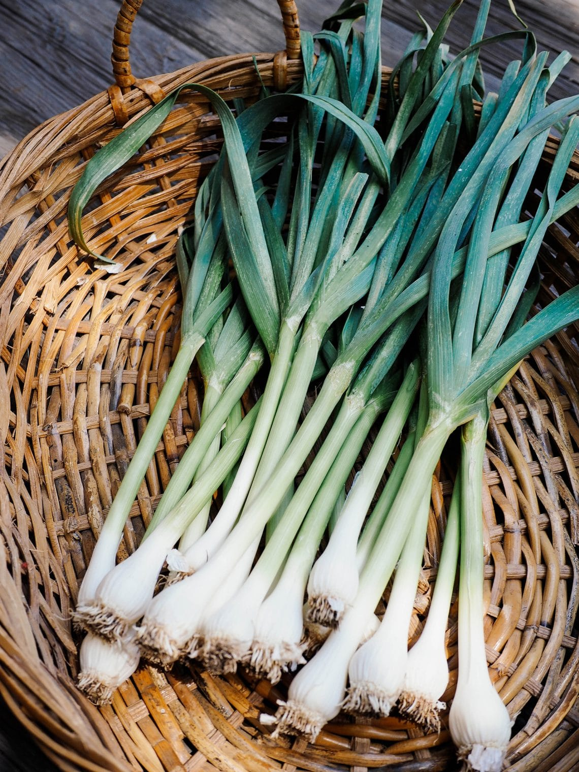How to grow, harvest, and use green garlic in spring