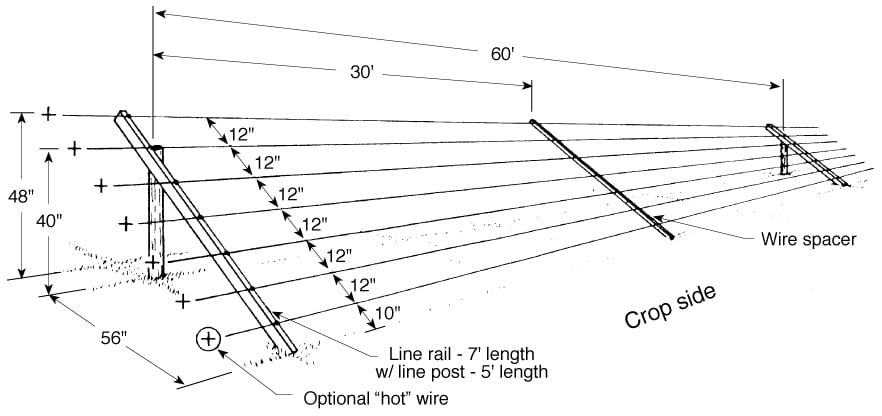 Diagram showing how to construct a seven-wire slanted deer fence